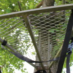 Treestand Site Selection