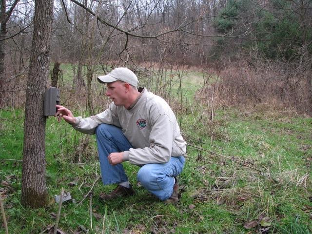 Drumming Log Wildlife Management